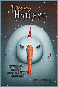 Image result for the literary hatchet 22