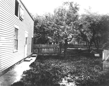 Back yard with barn on left